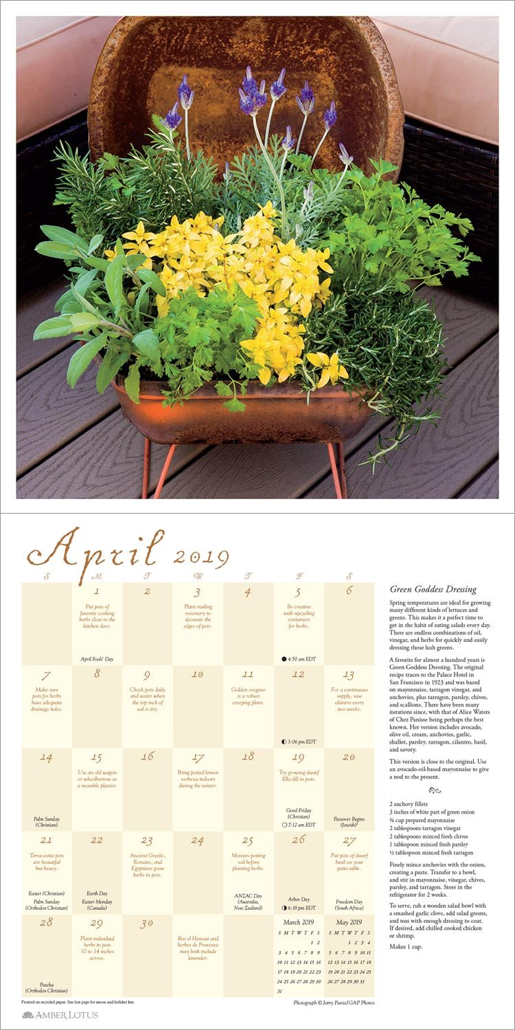 Herb Gardens 2019 Wall Calendar: Recipes & Herbal Folklore: Maggie Oster,  Amber Lotus Publishing: 0762109041055: Amazon.com: Books