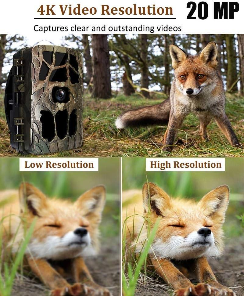 sumicorp.com berwachung von Eigentum und Tieren Aorula Wildkamera ...