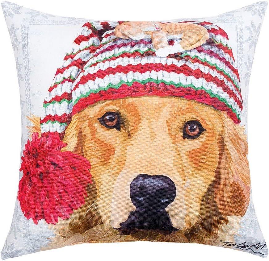 Amazon Com C F Home Winter Hat Golden Lab Premium Indoor Outdoor Decorative Accent Throw Pillow 18 X 18 Multicolored Home Kitchen