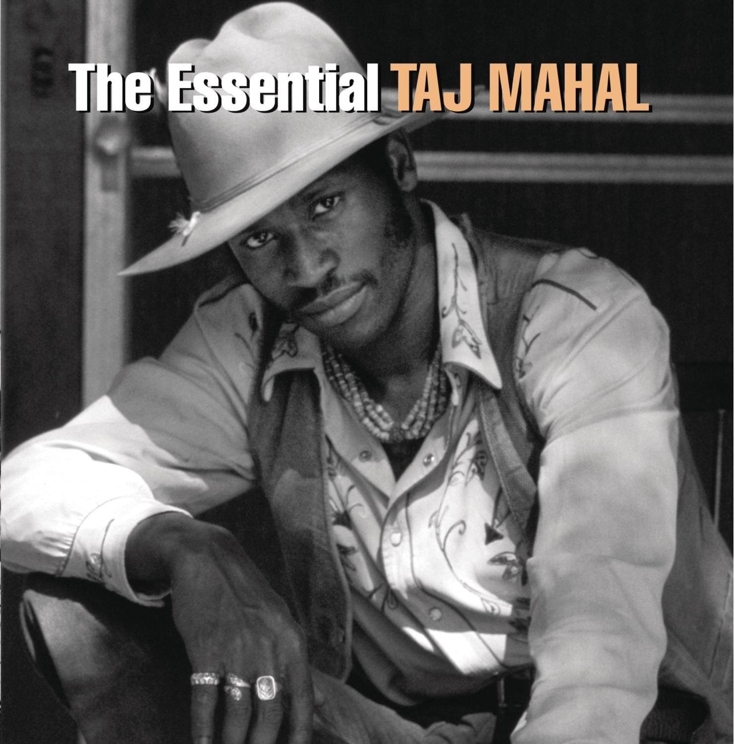 The Essential Taj Mahal by John Henry