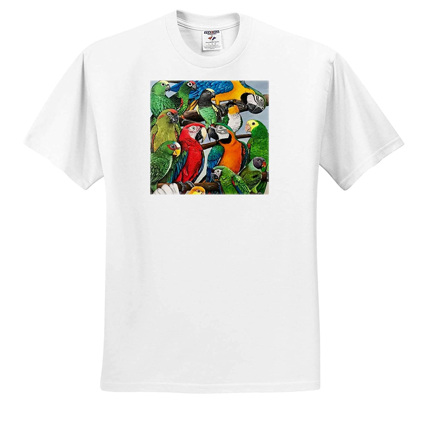 ts/_320529 Macaws and Other Parrots 3dRose Skye Elizabeth Designs Adult T-Shirt XL