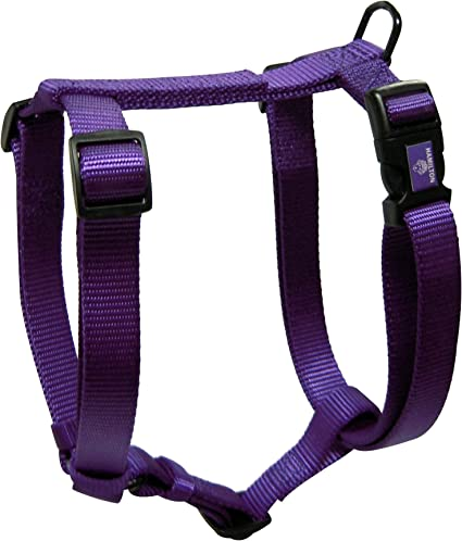 fits small dogs /& cats too Hamilton Ferret Harness and 4/' Lead Leopard Print