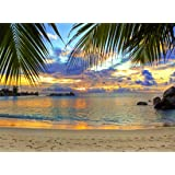 Zhy Tropical Seaside Scenery Backdrop 7X5FT Wooden Bridge Railing Sunset Sea Background White Curtain Backdrop Wedding Birthday Party Spring Theme Party Photography Studio Props