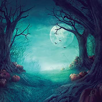 Dudaacvt 10x10ft Halloween Backdrops Pumpkin Moonlight Horror Forest Backdrop Vinyl Photo Background Studio Props Q02801010