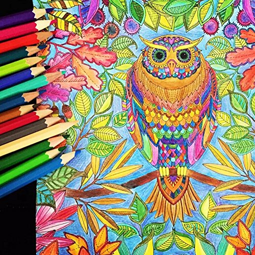 Bringsine Professional High Quality Colored Pencils for Kids and ...