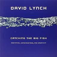 Catching the Big Fish: Meditation, Consciousness, and Creativity