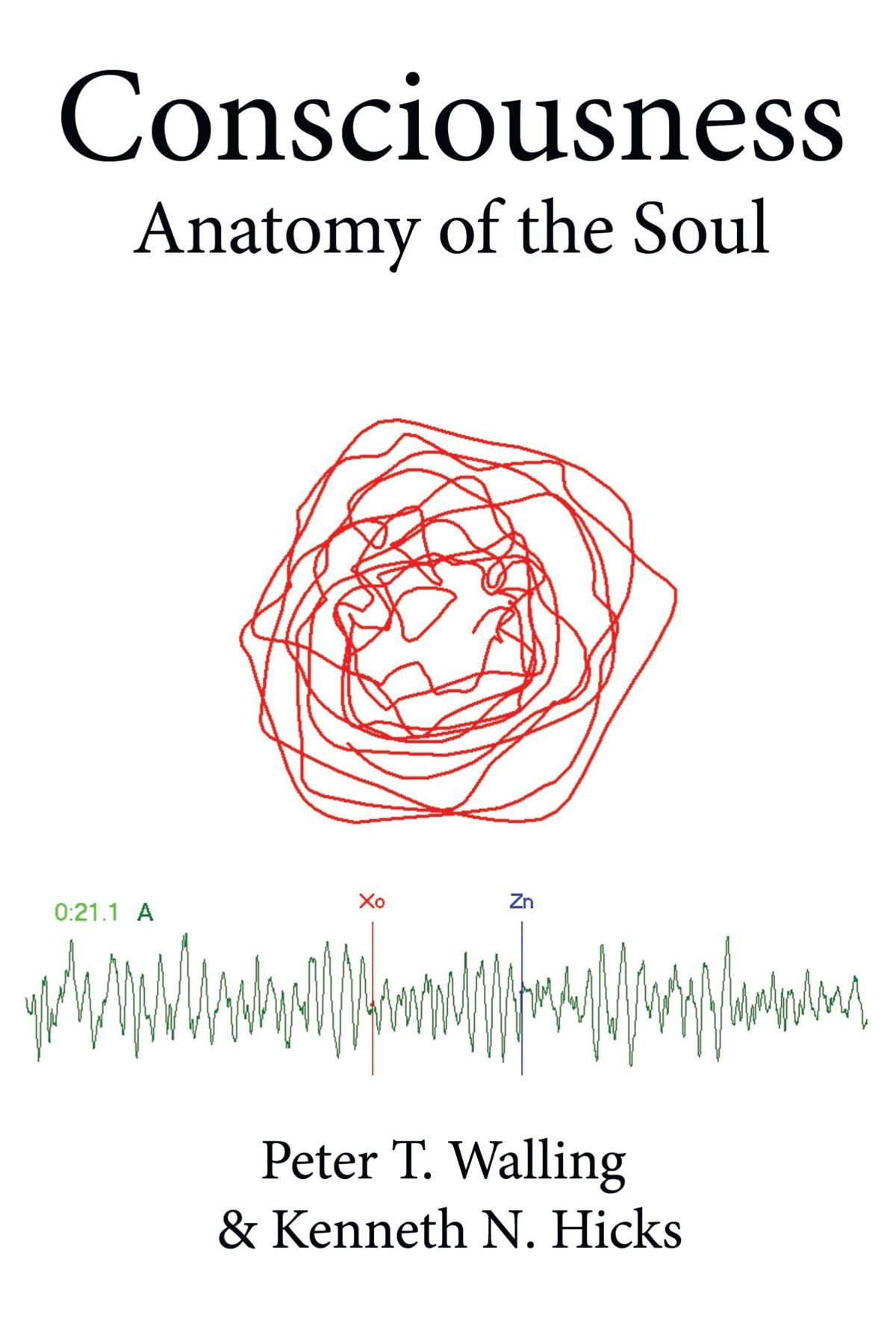 Consciousness Anatomy Of The Soul Peter T Walling Kenneth N