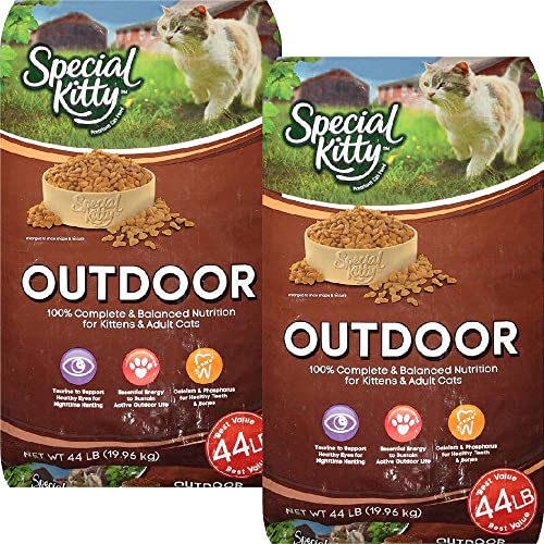 Special Kitty Outdoor 44 Lbs Bag of Dry Cat Food Pack of 2