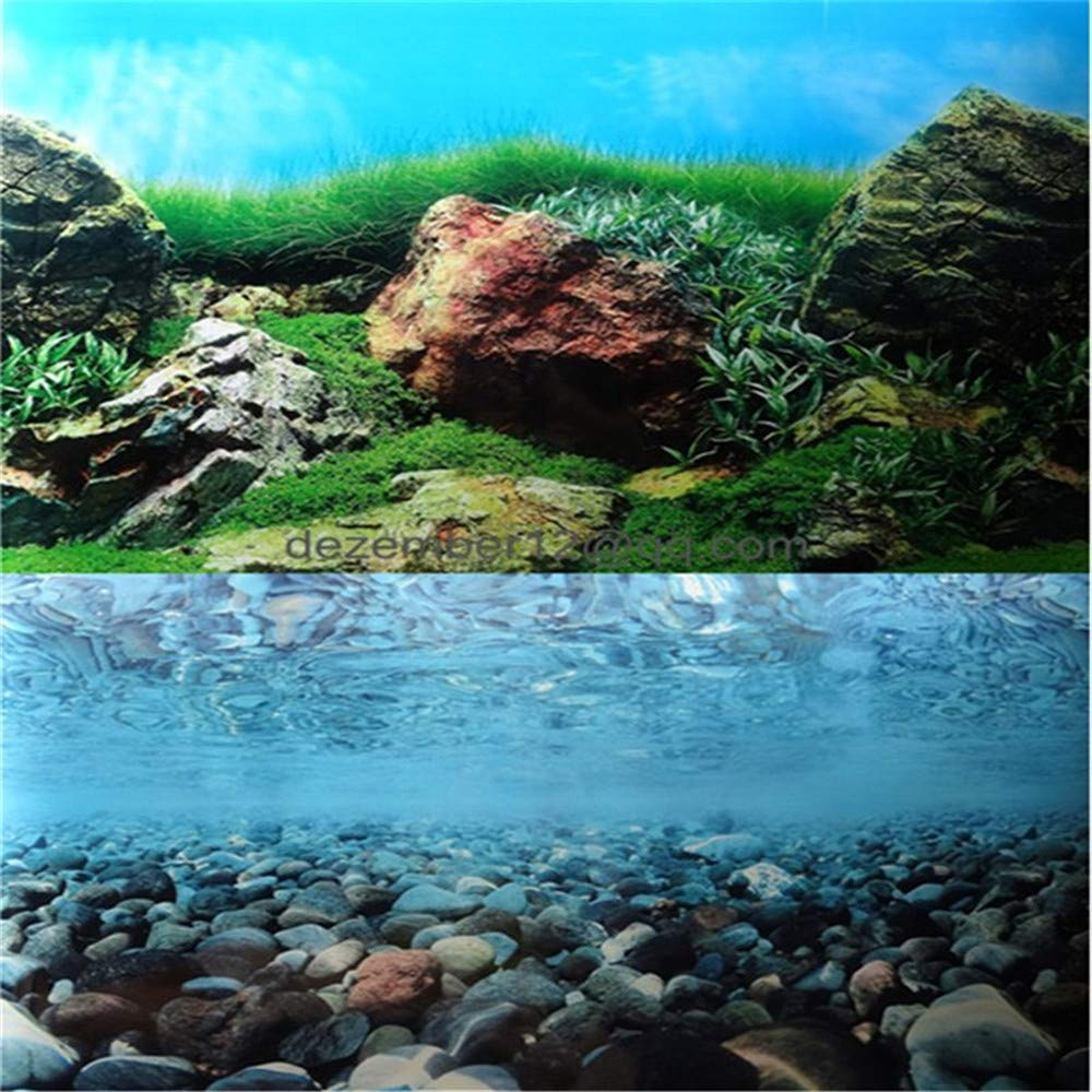 donau Double Sided Aquarium Background Poster Rock Ocean Landscape Fish Tank Backdrop Wall Paper Aquarium Décor 12 16 20 24 High (24 H x71 L) Generic