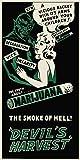 Reefer Madness (Green) Vintage Poster Style Weed Marijuana Pot Novelty Drug Smoking Humor Print Poster (Unframed 12 x 24 Print)