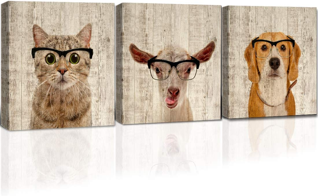 Gardenia Art Cute cat Goat Dog with Glasses on Wooden Background Pictures Wall Decor for Bedroom Living Room pet Shop, 12x12 inch/Piece, Framed, 3 Panels