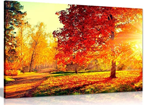 Amazon Com Autumn Scene Trees And Leaves In Sun Light Canvas Wall Art Picture Print 30x20in Posters Prints
