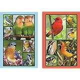 Songbirds Bridge Playing Cards Jumbo Index Playing Cards