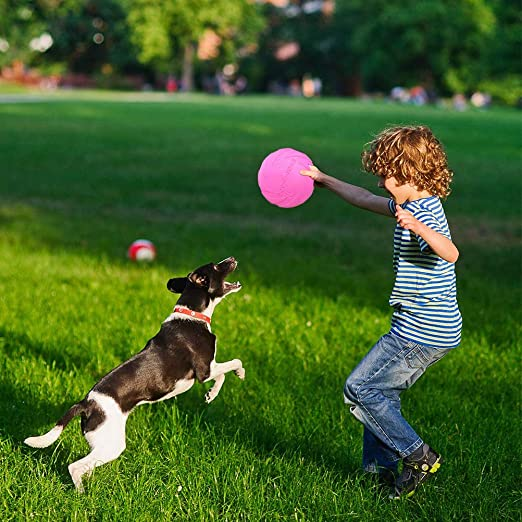 ZSWQ Frisbee Frisbee Perro Juguete de Goma para Mascotas Frisbee Juguete de Perro Interactivos Juguetes de Entrenamiento para Mascotas
