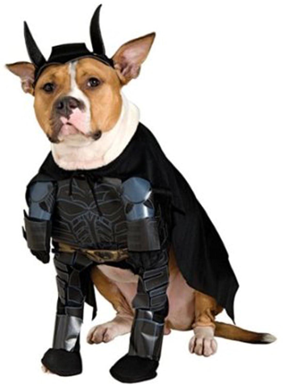 Amazon.com  Batman Dog Pet Costume - Small  Pet Costumes  Pet Supplies  sc 1 st  Amazon.com & Amazon.com : Batman Dog Pet Costume - Small : Pet Costumes : Pet ...