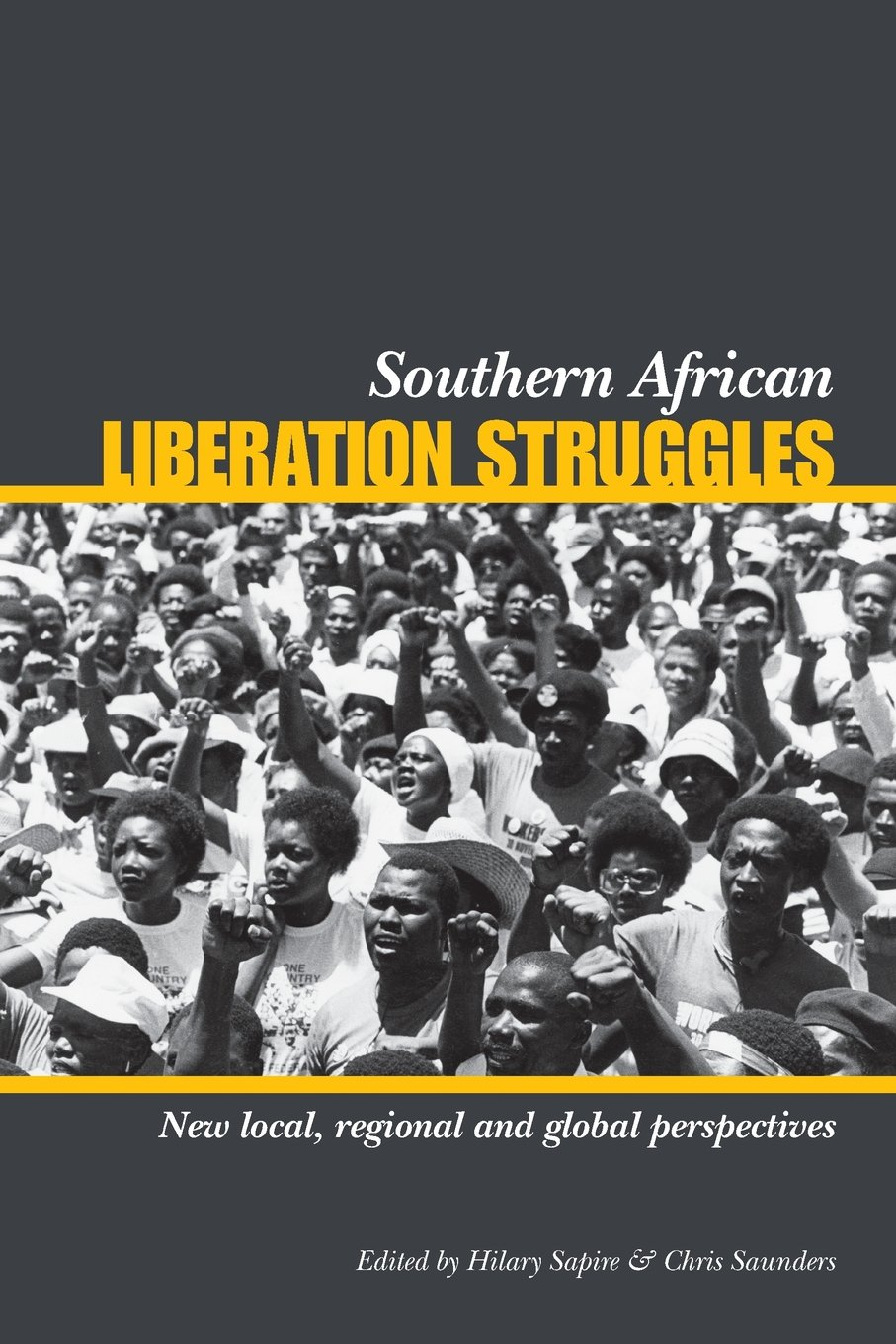 Southern African Liberation Struggles: New Local, Regional and Global  Perspectives: Amazon.co.uk: Hilary Sapire, Chris Saunders: 9781919895932:  Books
