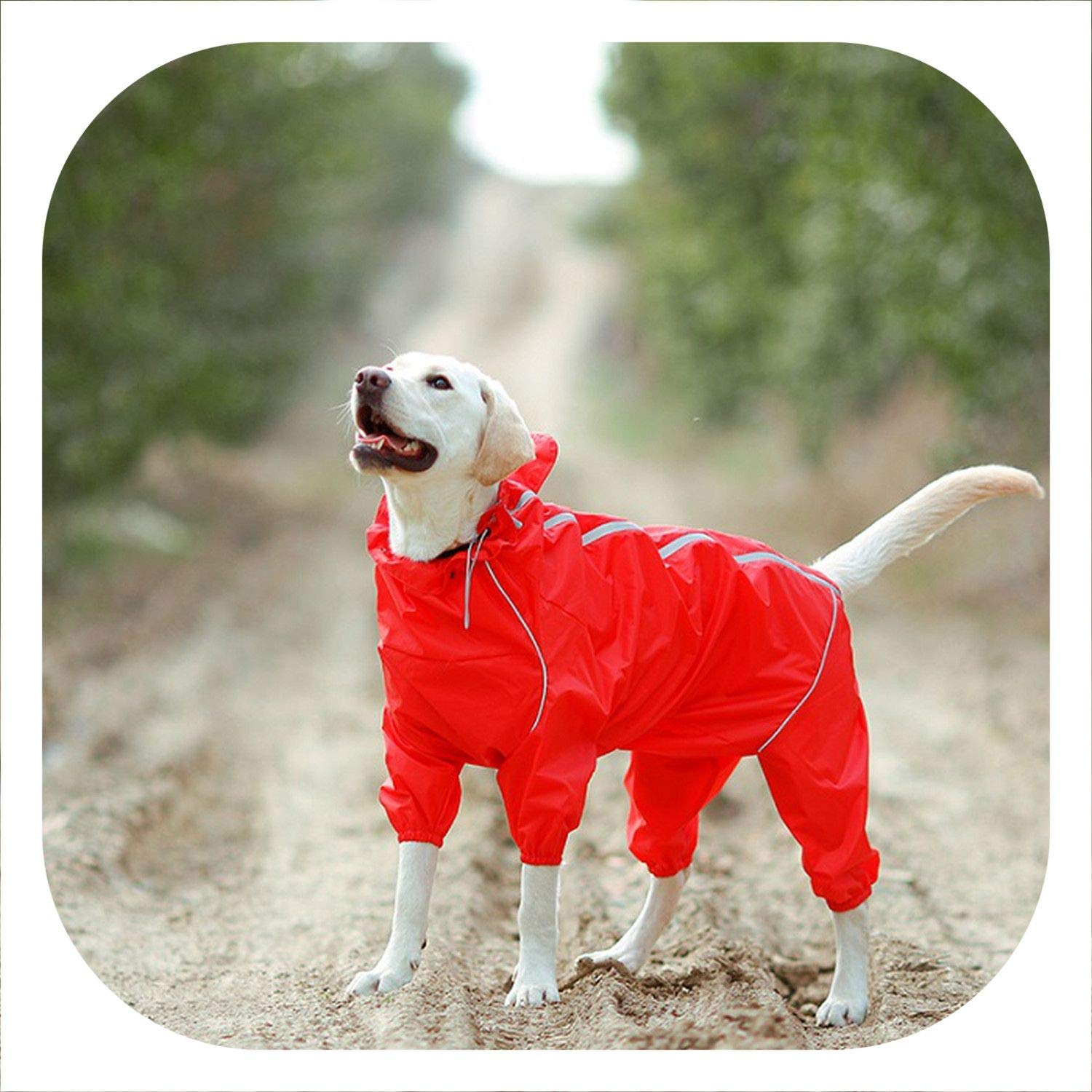 Pet Dog Raincoat Reflective Waterproof Clothes High Neck Hooded Jumpsuit for Small Big Dogs Rain Cloak Golden Retriever Labrador,Red,16