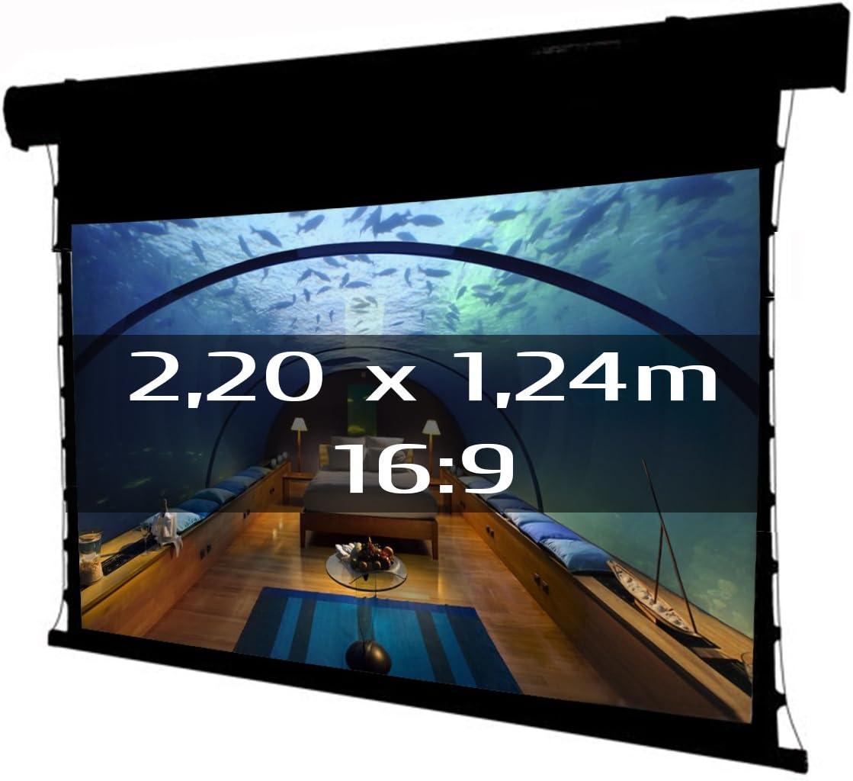 Pantalla eléctrica tensionada 220x124cm: Amazon.es: Electrónica