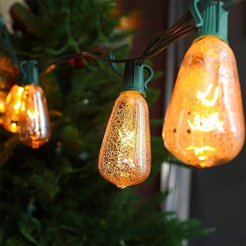 LOKATSE HOME Ft Edison String Lights Outdoor 10 Bulbs for Patio Garden Porch Backyard Party Deck Yard, Orange