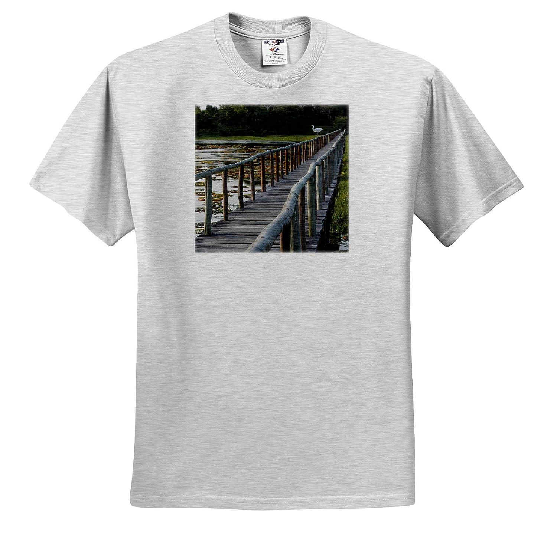 Bridge at Porto Jofre ts/_314091 3dRose Danita Delimont - Adult T-Shirt XL Brazil Brazil The Pantanal