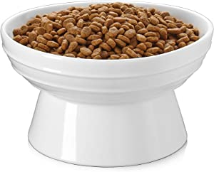 Y YHY Dog Bowl,Elevated Dog Food Bowls,Raised Dog Water Bowls,30 Ounce Ceramic Pet Bowl for Medium Dogs and Adult Cats,Anti-Vomiting,Protection Cervical Spine,Microwave Dishwasher Safe,White