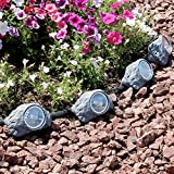 Sunnydaze Outdoor Solar Garden Lights (Set of 4), Decorative Rock Accent LED Pathway Light