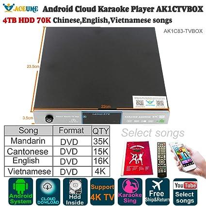 Amazon com: 4TB HDD 70K Chinese,English,Vietnamese Songs