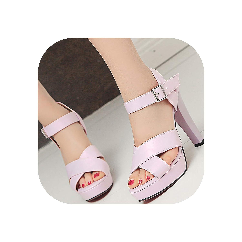 Purple Women Sandals Thick High Heels Open Toe Platform shoes Woman Summer shoes