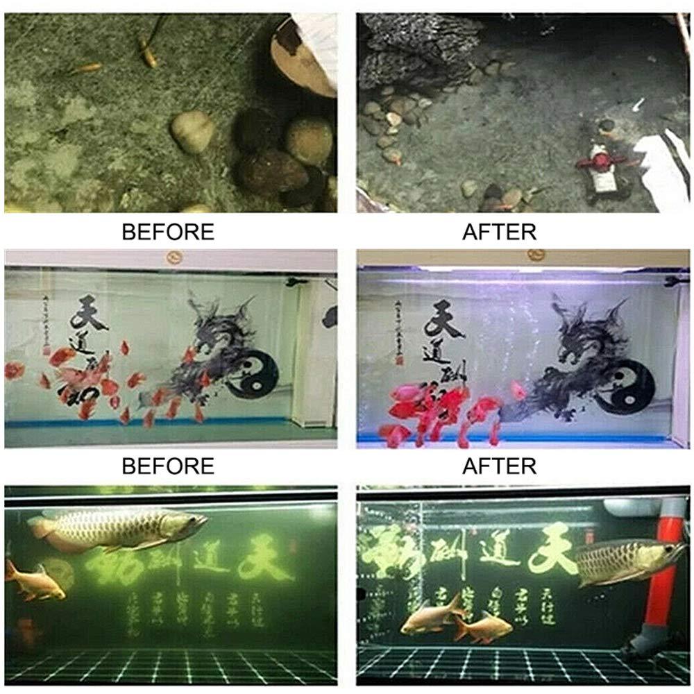 ZHAOHE Purificateur deau Eco-Aquarium avec Filtre /à Charbon Actif pour Filtre daquarium pour bassins daquarium et Purification deau