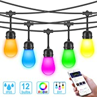 MINGER Waterproof Led Outdoor String Lights, Govee DreamColor Cafe Lights with APP (DIY, RGBW, Sync to Music), 36Ft 12 Bulbs