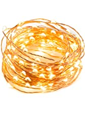33 ft 100 LED String Lights With RF Remote Control, Super Soft Copper Wire TaoTronics Waterproof Outdoor And Indoor Decorative Lights For Bedroom, Patio, Garden, Gate, Yard, and More