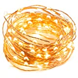 LED String Lights 33 ft with 100 LEDs, TaoTronics Waterproof Decorative Lights for Bedroom, Patio, Parties ( Copper Wire Lights, Warm White )