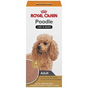 Royal Canin Wet Dog Food For Poodle