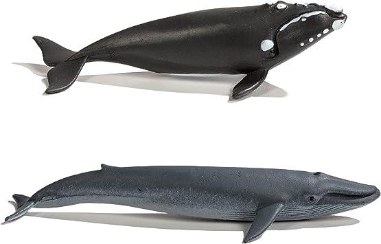 impugnado-tubos temas territorio Safari Ltd 100072 ballenas 10 minifiguras