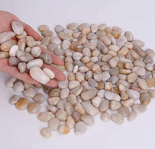 Hisredsun - Piedras decorativas para maceta, jardín y acuario, 1 kg, blanco: Amazon.es: Jardín