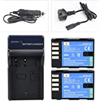 DSTE 2X NP-F550 Battery + DC01 Travel and Car Charger Adapter for Sony CCD-RV100 CCD-RV200 SC5 SC9 TR1 TR940 TR917 Camera CN-160 CN-216 CN-304 YN 300 VL600 LED Video Light as NP-F330 NP-F530 NP-F570