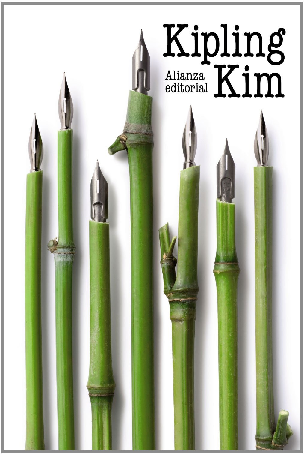 Kim (El Libro De Bolsillo - Bibliotecas De Autor - Biblioteca Kipling) Tapa blanda – 3 abr 2012 Rudyard Kipling José Luis López Muñoz Alianza 8420669776