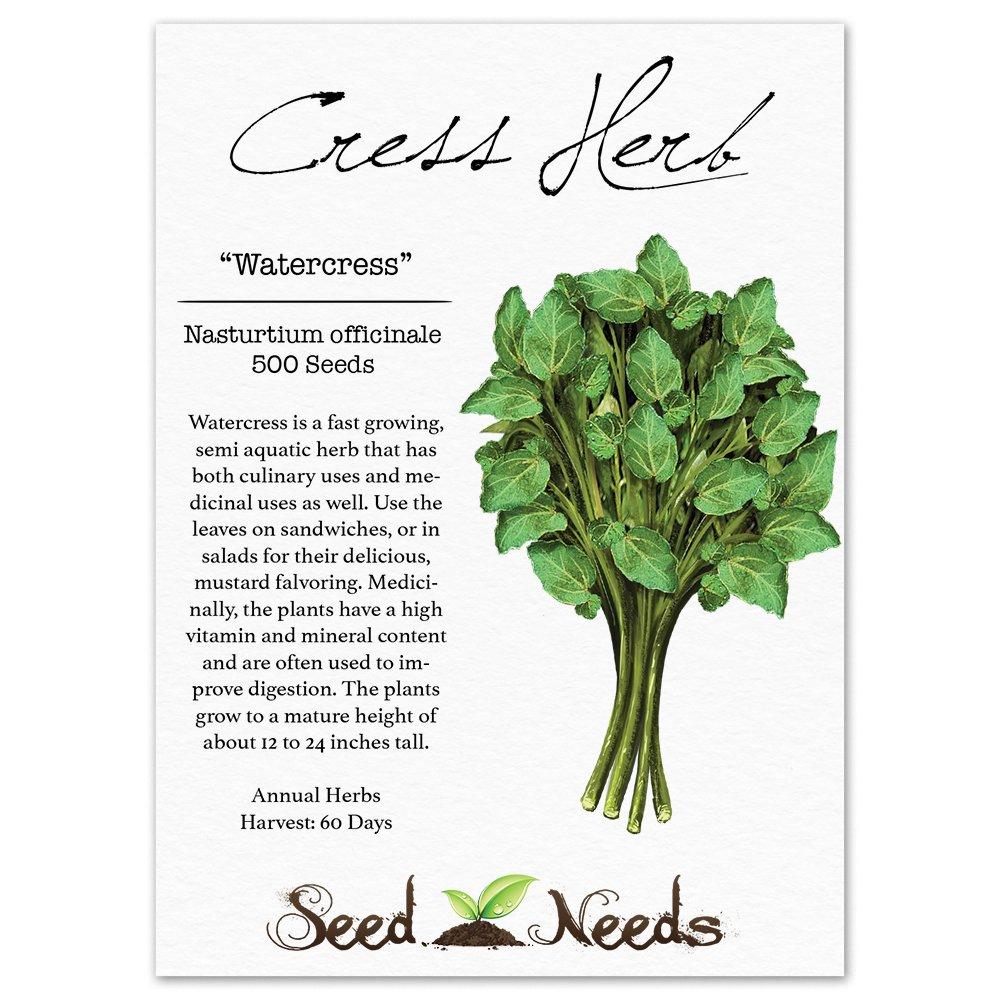 Buy culinary herbs plants nasturtium plants - Amazon Com Package Of 500 Seeds True Watercress Nasturtium Officinale Non Gmo Seeds By Seed Needs Herb Plants Garden Outdoor