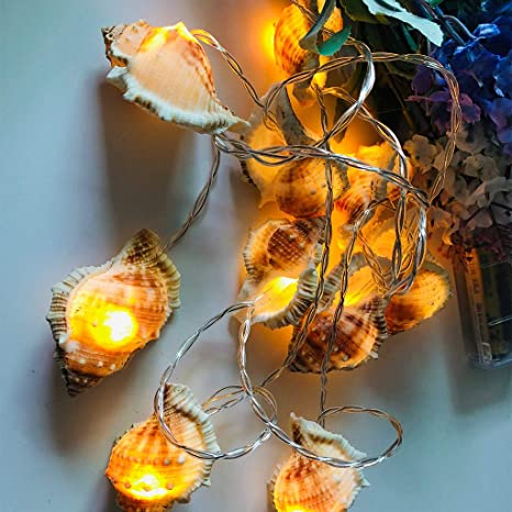 Led Decorative Lights Marine Conch Light Photo Props For Garden Home Birthday Hawaiian Party Gifts Decor Lighting Amazon Com