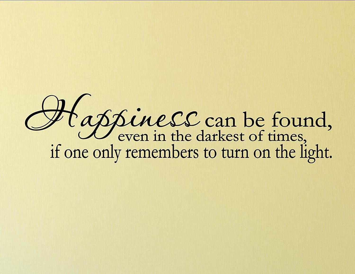 Amazon.com: Happiness can be found, even in the darkest of times, if ...