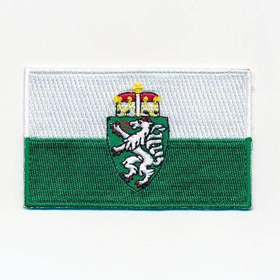 Hegibaer 40 X 25 Mm Steiermark Österreich Flagge Graz Wien Aufnäher Aufbügler 1127 A Auto