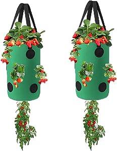 Miewslan 2 Pack Gardens Upside Down Planter, Hanging Tomato Strawberry Grow Planter Tomato Garden Vegetable Planting Pot