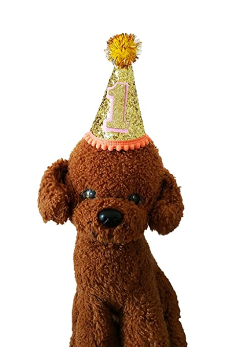 Amazon PET SHOW Cute Small Dog Birthday Hat Cat Headband For Pets 1 Year Old Party Gold Pack Of Pet Supplies