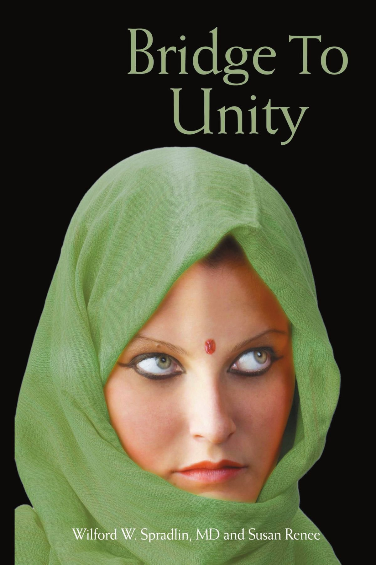 Download Bridge to Unity pdf