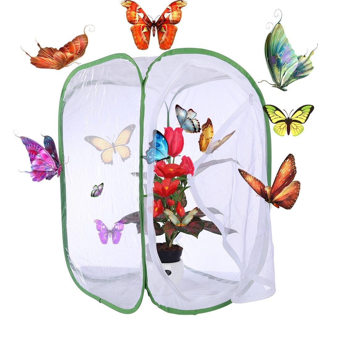 UOPJKL Gabbia a farfalla Habitat Cage Bug Butterfly Village habitat kit Apparire 60cm