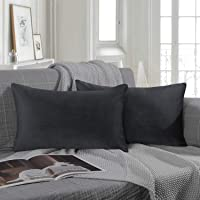 Ashler Set of 2 Soft Velvet Shinny Decorative Throw Pillow Cushion Cover