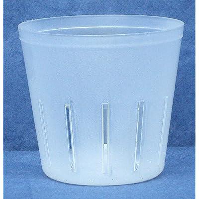 Clear Plastic Pot for Orchids 3 inch Diameter - Quantity 1: Garden & Outdoor