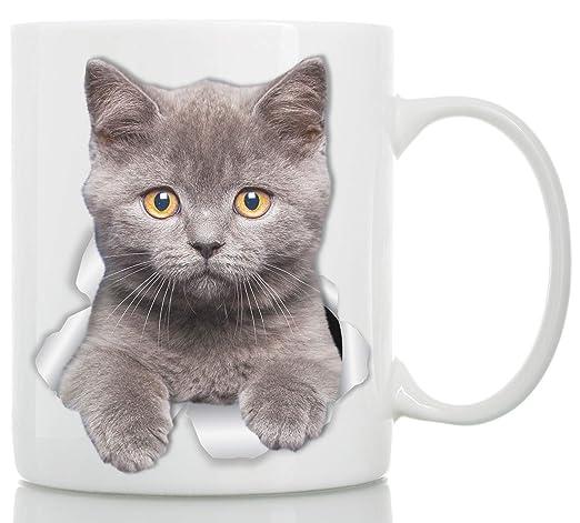 Winston & Bear Taza de Gato Británico de Pelo Corto - Taza Gato ...