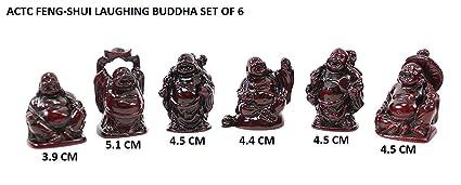 ACTC Feng Shui Laughing Buddha | Happy Buddha Set of 6 Different Buddha Statues | Maitreya Buddha for Health and Happiness | Money Man