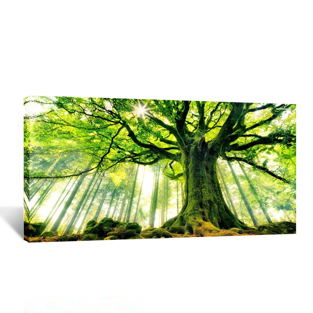 Kreative Arts Canvas Large Art Print Spring Forest Nature Green Big Tree Wall Art Photo Printed on Canvas Framed Artwork for Office Wall Decoration Ready to Hang 20x40inch